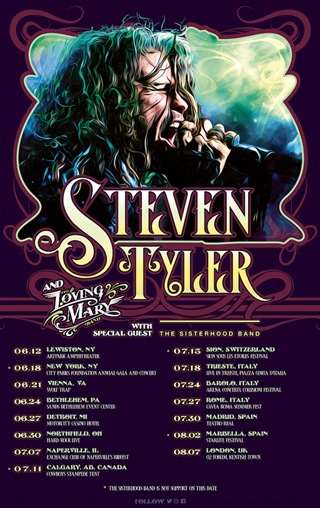 Steven Tyler And The Loving Mary Band Tour